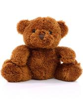 Soft Plush Teddy Marco